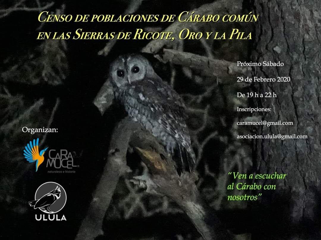 Censo de Cárabo, con CARAMUCEL y ULULA