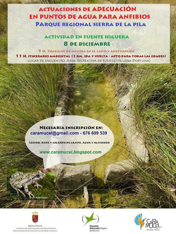 Adecuación de un punto de agua para anfibios, con Caramucel, Naturaleza e Historia