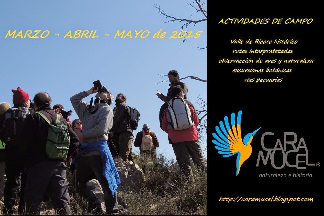 Cartel de Caramucel, de marzo-abril-mayo