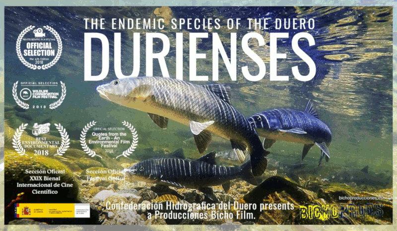 Cartel del documental Durienses