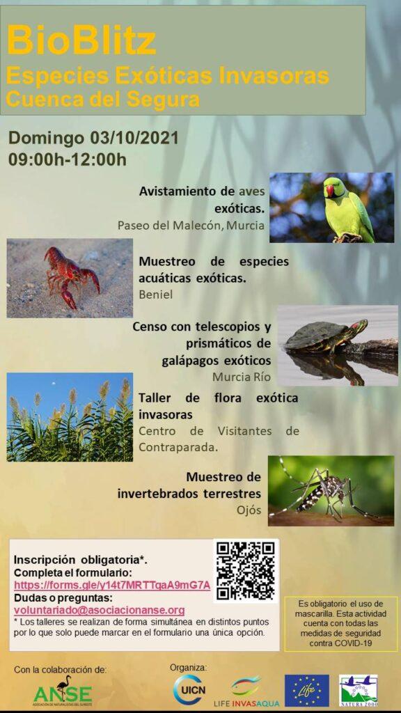 BioBlitz Especies Exóticas Invasoras Cuenca del Segura