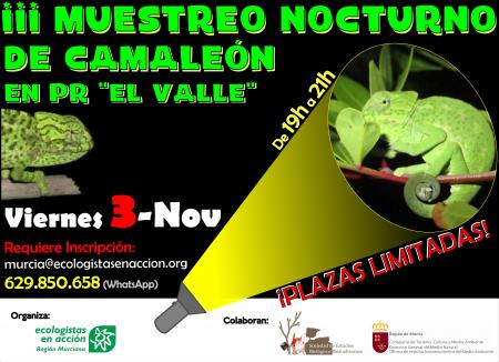 III Muestreo de camaleón en El Valle, con Ecologistas en Acción de la Región Murciana