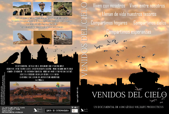 Cartel de la película documental 'Venidos del cielo'