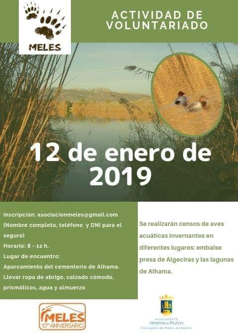 Censo de aves acuáticas, con Meles