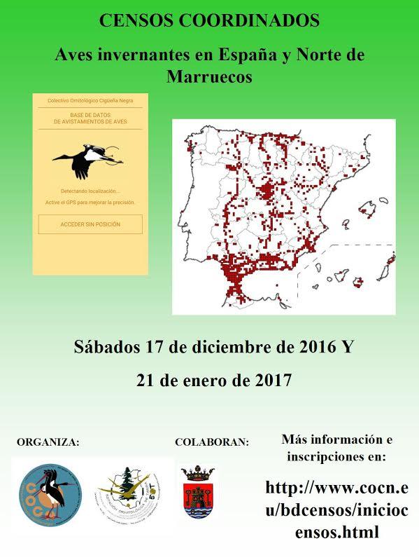 Censo coordinado de aves invernantes en España y Norte de Marruecos , con COCN