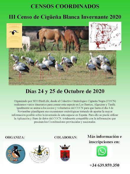 III Censo de Cigüeña Blanca Invernante 2020, con SEO/BirdLife