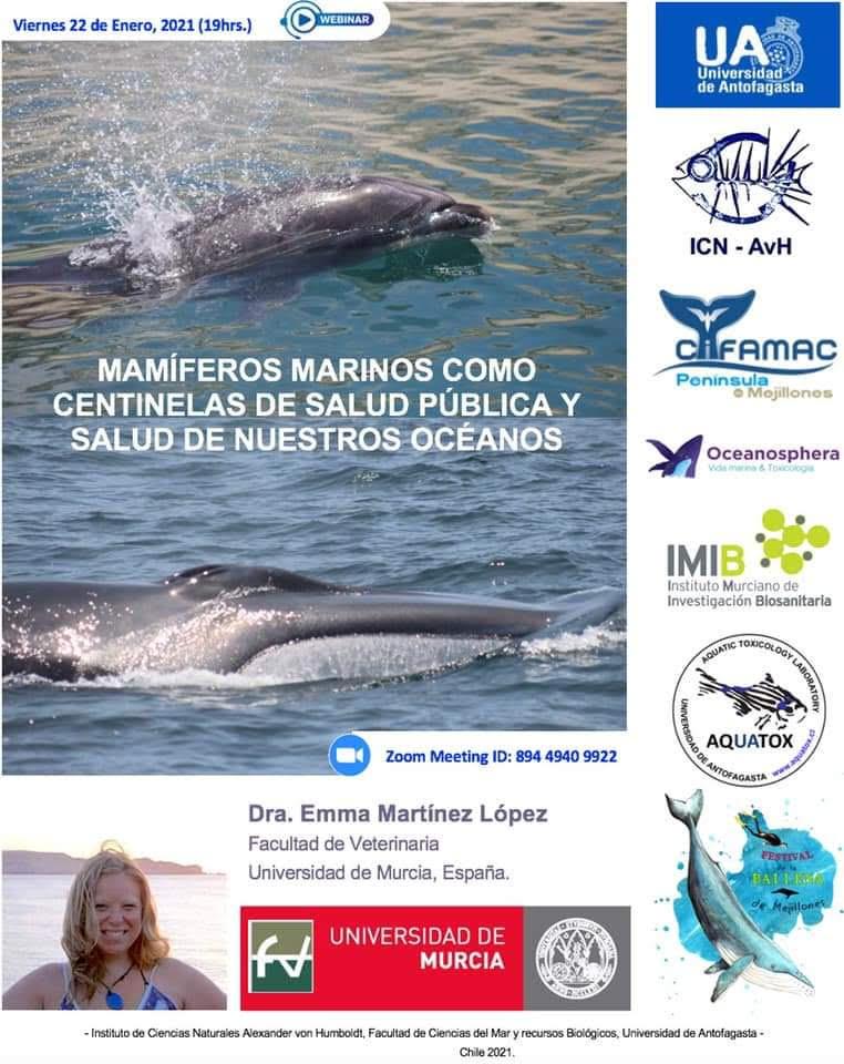 Charla sobre mamíferos marinos como centinelas del mar, con la UMU