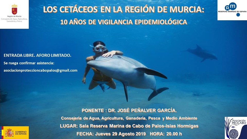 Charla 'Cetáceos en la Región de Murcia', con Procabo