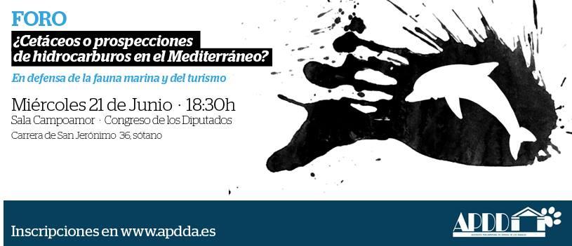Foro: '¿Cetáceos o prospecciones de hidrocarburos en el Mediterráneo?', con APDDA