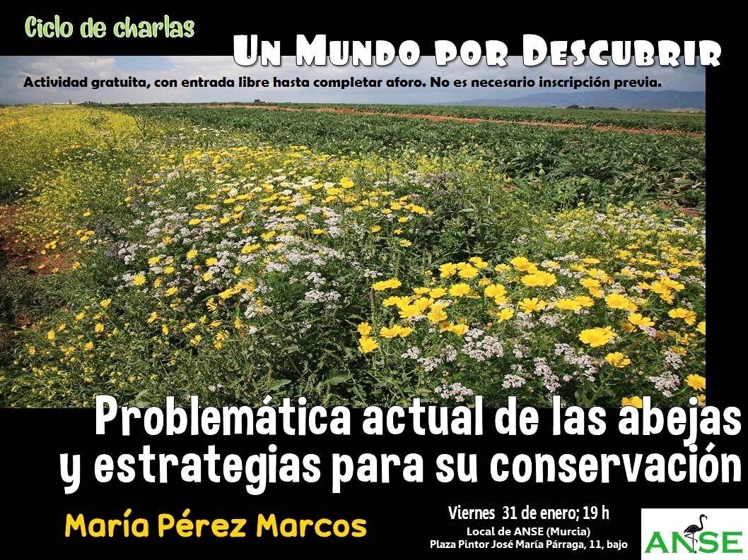 Charla 'Problemática actual de las abejas y estrategias para su conservación', con ANSE