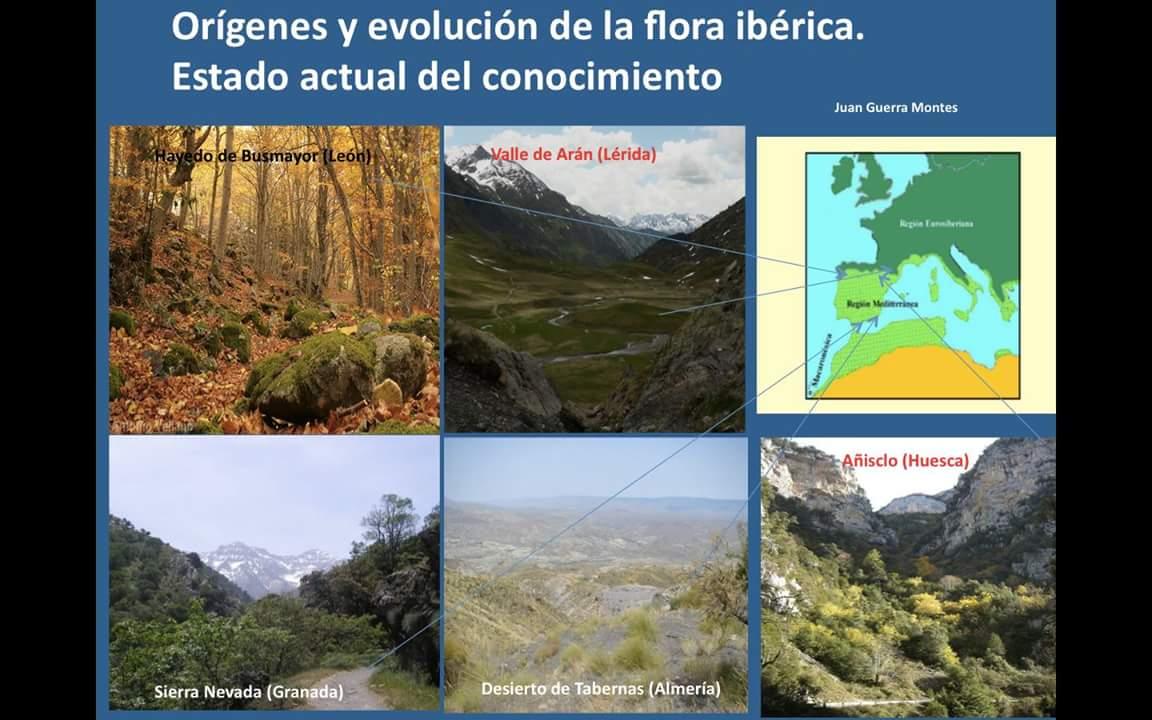 Charla sobre flora ibérica
