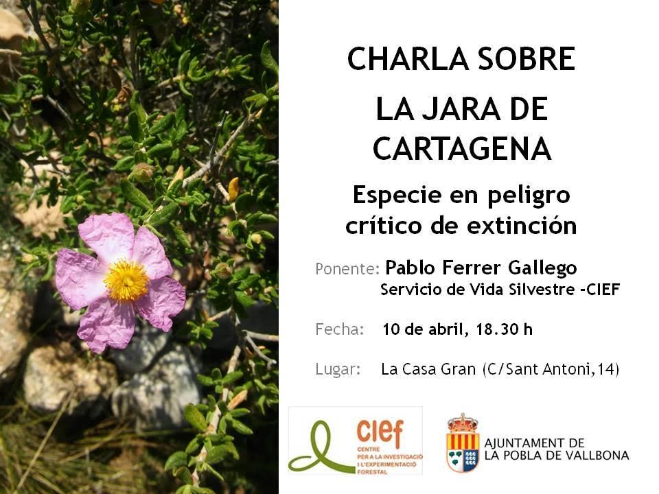 Charla sobre la Jara de Cartagena, con el CIEF