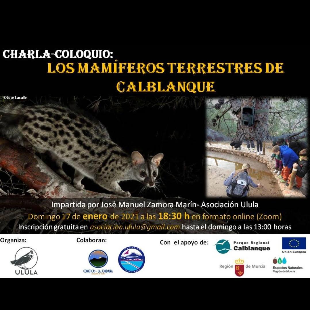 Charla on line sobre mamíferos de Calblanque, con ULULA