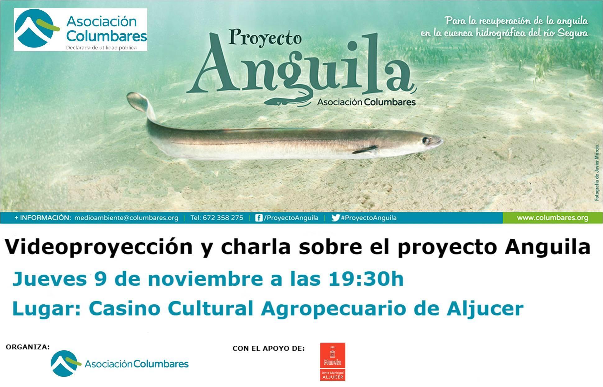 Charla sobre el 'Proyecto Anguila', con la Asociación Columbares