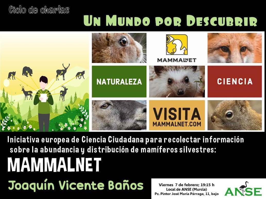 Ciencia ciudadana para conocer a los mamíferos silvestres, con ANSE