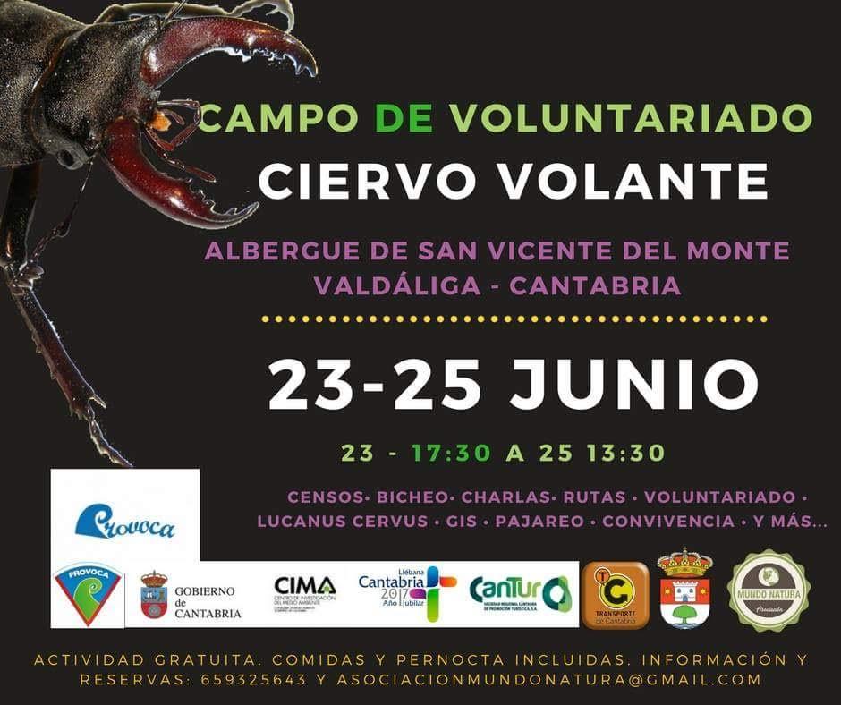 Voluntariado sobre el ciervo volante, con Asociación Mundo Natura