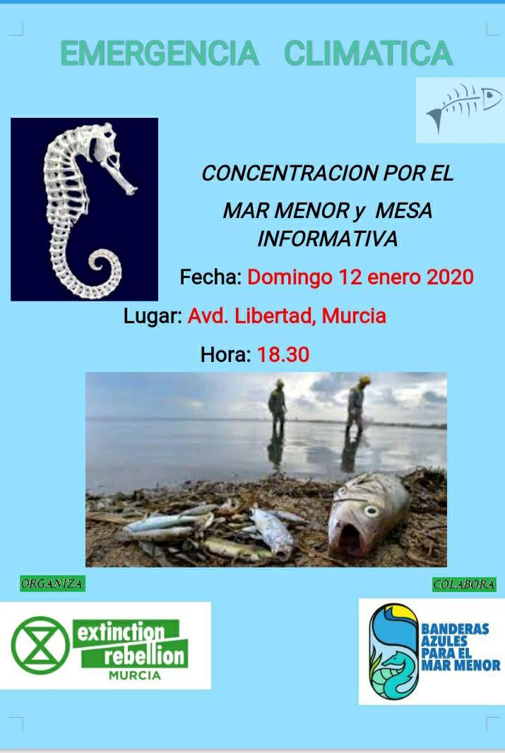 Concentración por el Mar Menor y Mesa Informativa, XR