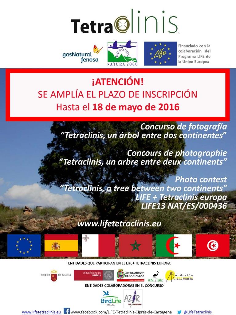 Concurso de fotos sobre la sabina mora con ANSE y el Proyecto LIFE Tetraclinis-Europa.