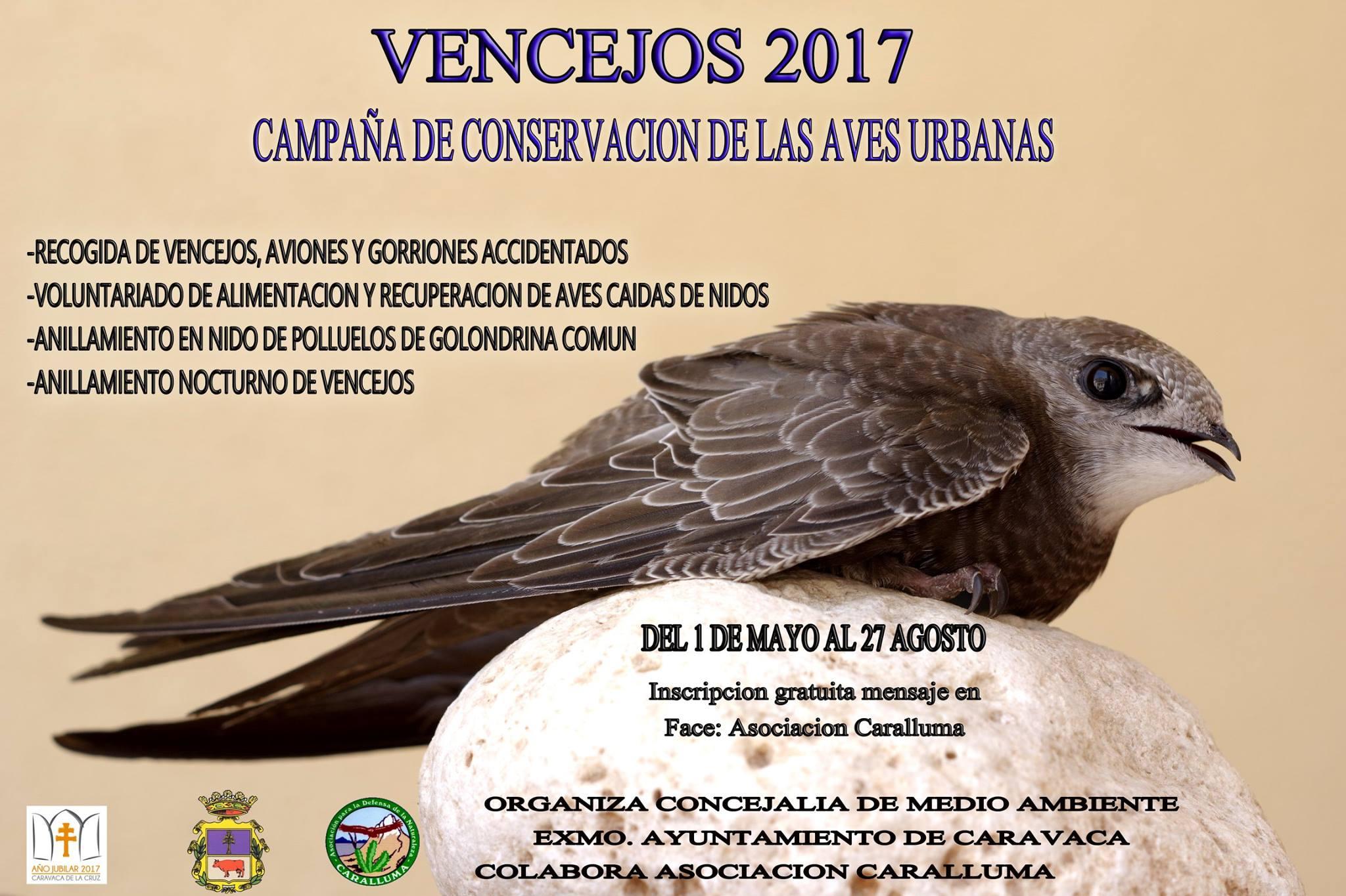 Campaña de Conservación de las Aves Urbanas, con Caralluma
