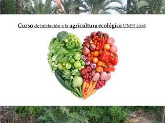 Curso de Agricultura Ecológica, con la Oficina Ambiental de la UMH.