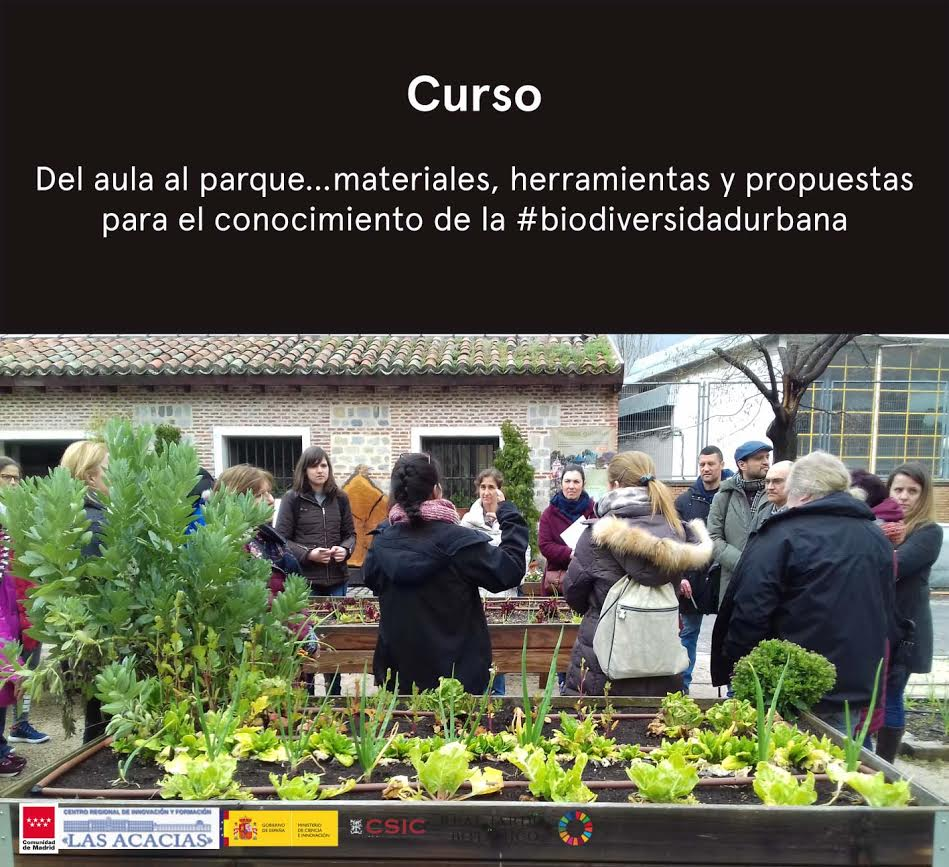 Curso online 'Del aula al parque', con el RJB de Madrid - CSIC