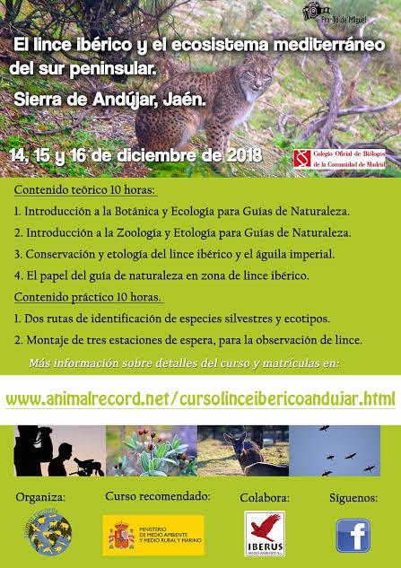 Curso sobre el lince ibérico, con Animal Record