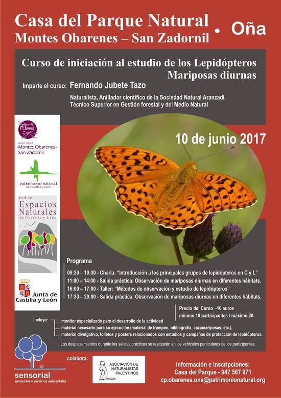 Iniciación al estudio de mariposas diurnas, con Sensorial