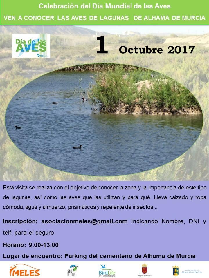 Día de las Aves en las lagunas de Alhama de Murcia, con Meles