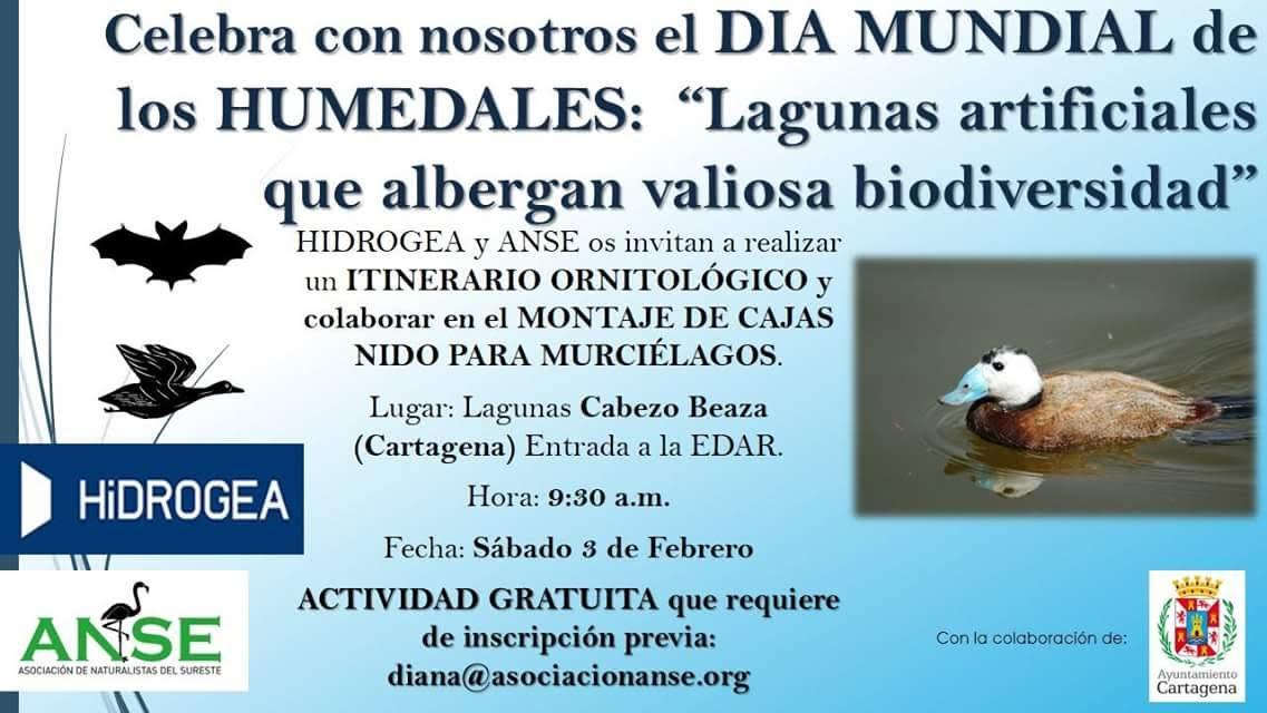 Itinerario ornitológico + Cajas para murciélagos, con Hidrogea y ANSE