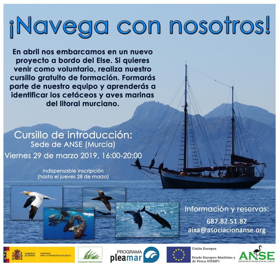 Cursillo de introducción a los cetáceos y aves marinas murcianas, con ANSE