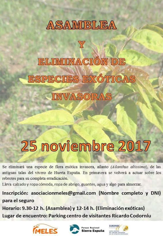 Eliminación de plantas exóticas , con Meles