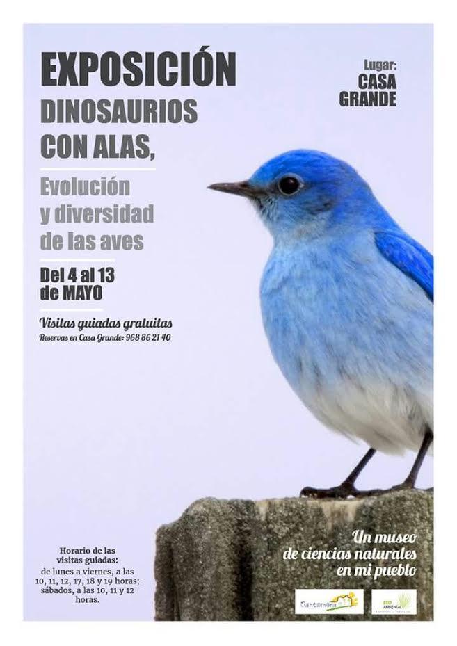 Expo sobre aves: 'Dinosaurios con alas', con Ecoambiental