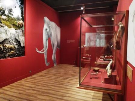 Exposición sobre la Cueva Victoria, Museo Arqueológico de Murcia