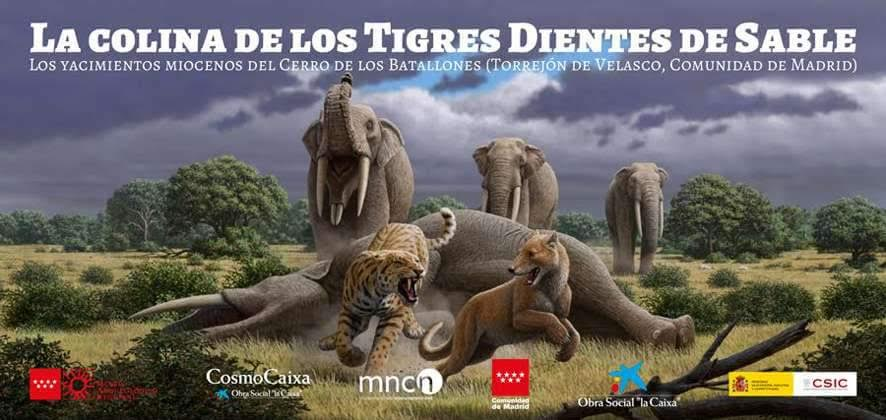 'La colina de los tigres dientes de sable', con el Museo Arqueológico Regional de Madrid