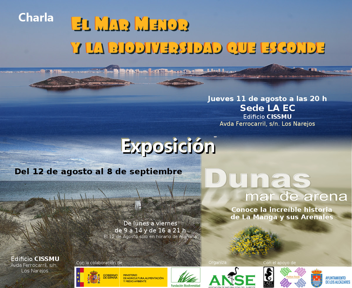 Expo 'Dunas, un mar de arena', con ANSE