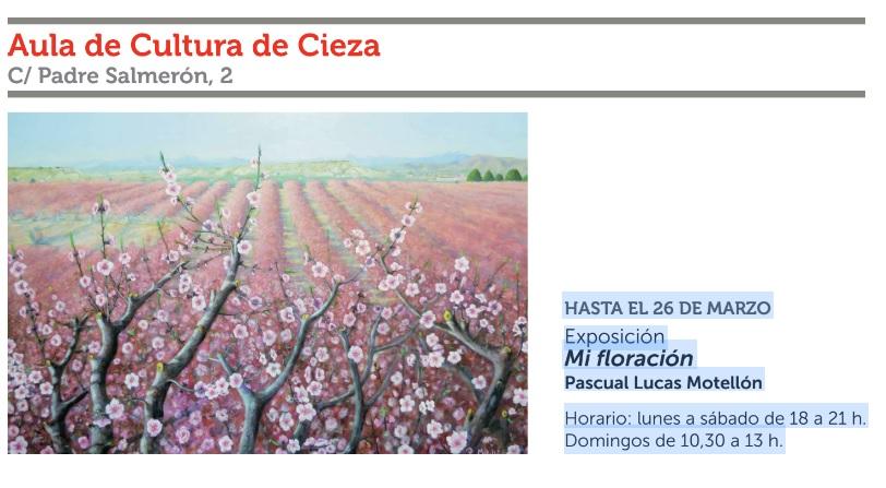 Expo de cuadros sobre la floración de Cieza, con Cajamurcia