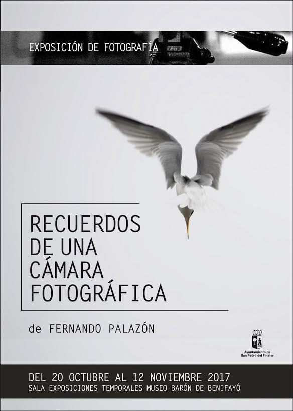 Exposición de fotos sobre aves, con el Ayto. de San Pedro del Pinatar