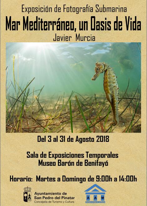 Expo 'Mar Mediterráneo, un oasis de vida' de Javier Murcia