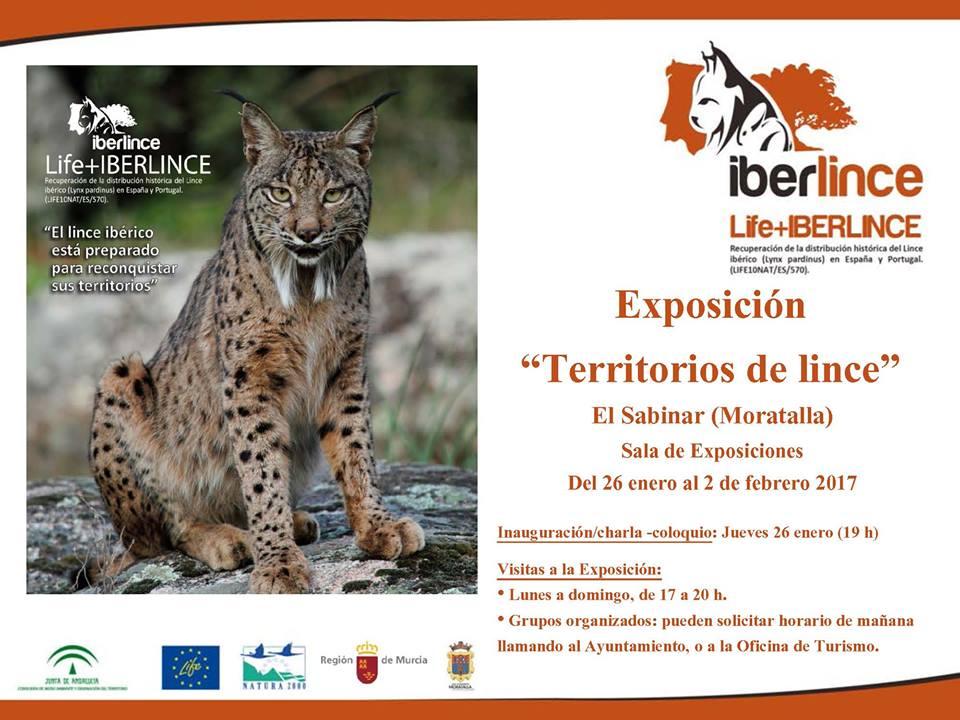 Expo 'Territorios de Lince', con la CARM