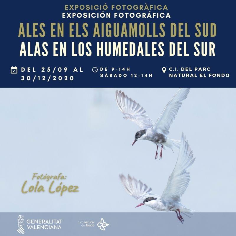 Expo 'Alas en los humedales del sur', con El Hondo