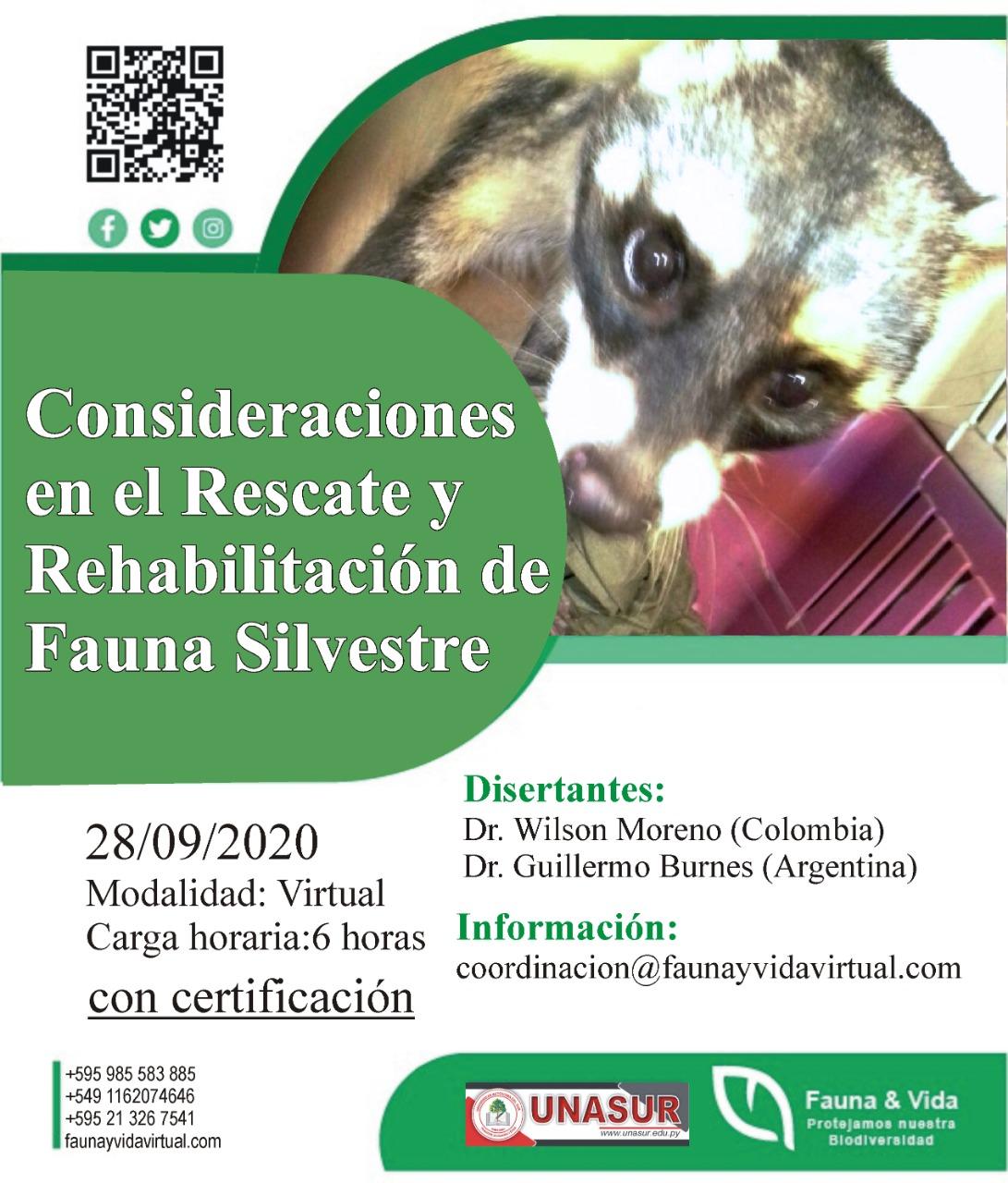 Workshop sobre rescate y rehabilitación de fauna silvestre, con Fauna & Vida