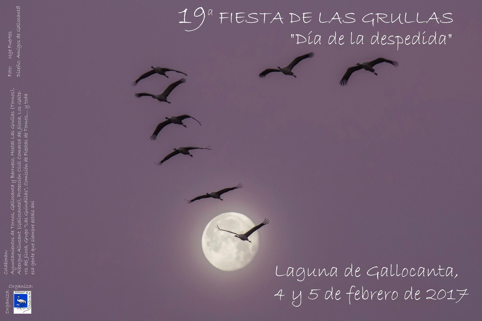 Cartel de la 19 Fiesta de Despedida de las Grullas, con Amigos de Gallocanta.