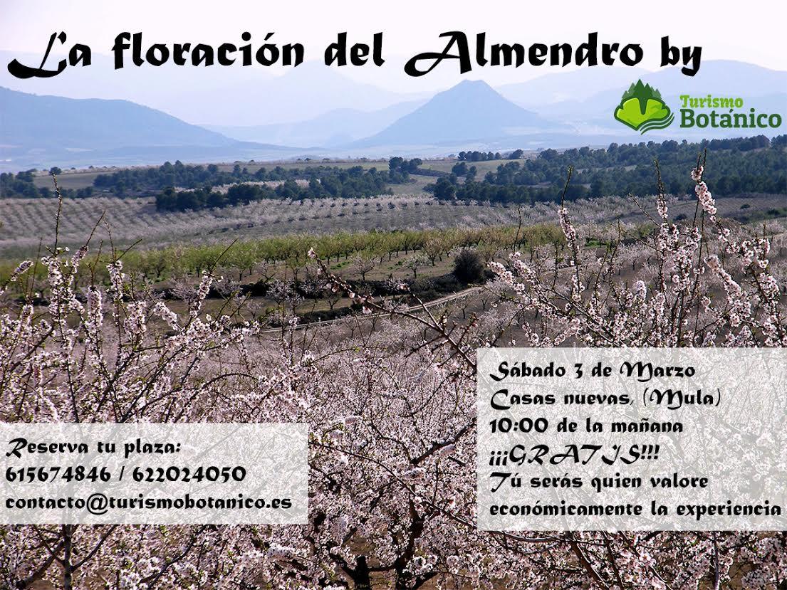 Floración del almendro, con TURISMO BOTANICO