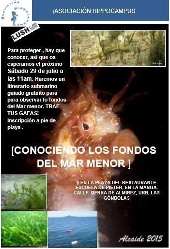 Conociendo los fondos del Mar Menor, con la asociación Hippocampus