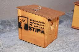 Taller de construcción de cajas-nido para pájaros, con Stipa.