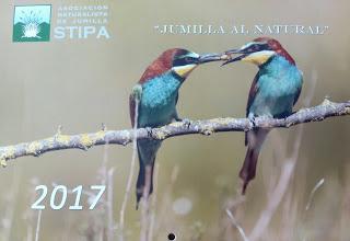 Concurso de fotos de naturaleza de Jumilla, con Stipa