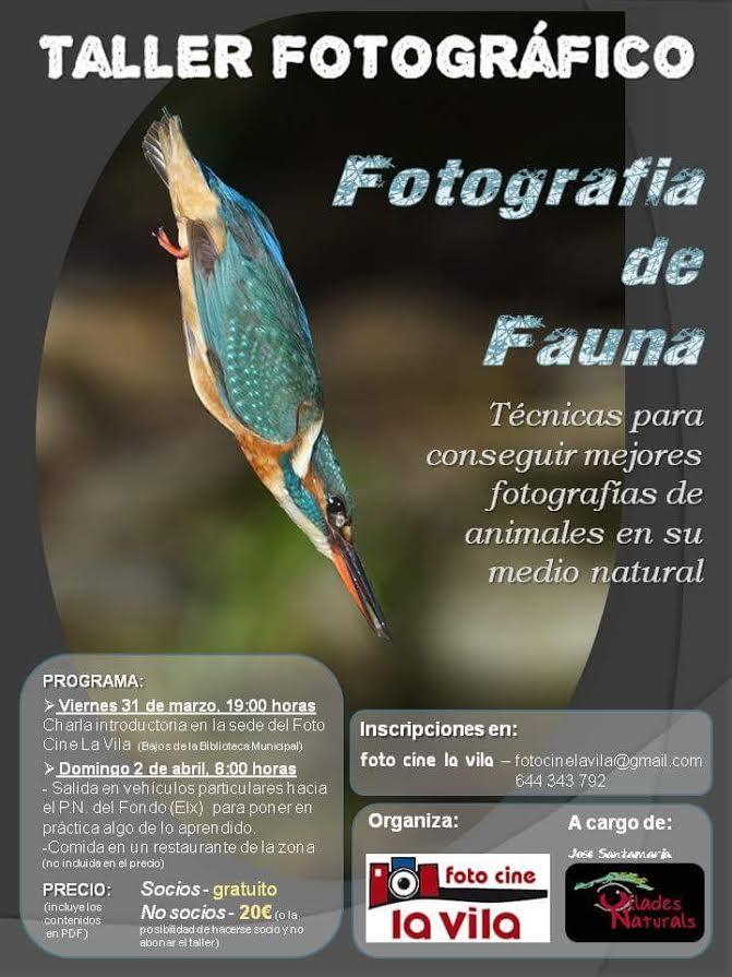 Taller de fotografía de fauna, con Foto Cine La Vila