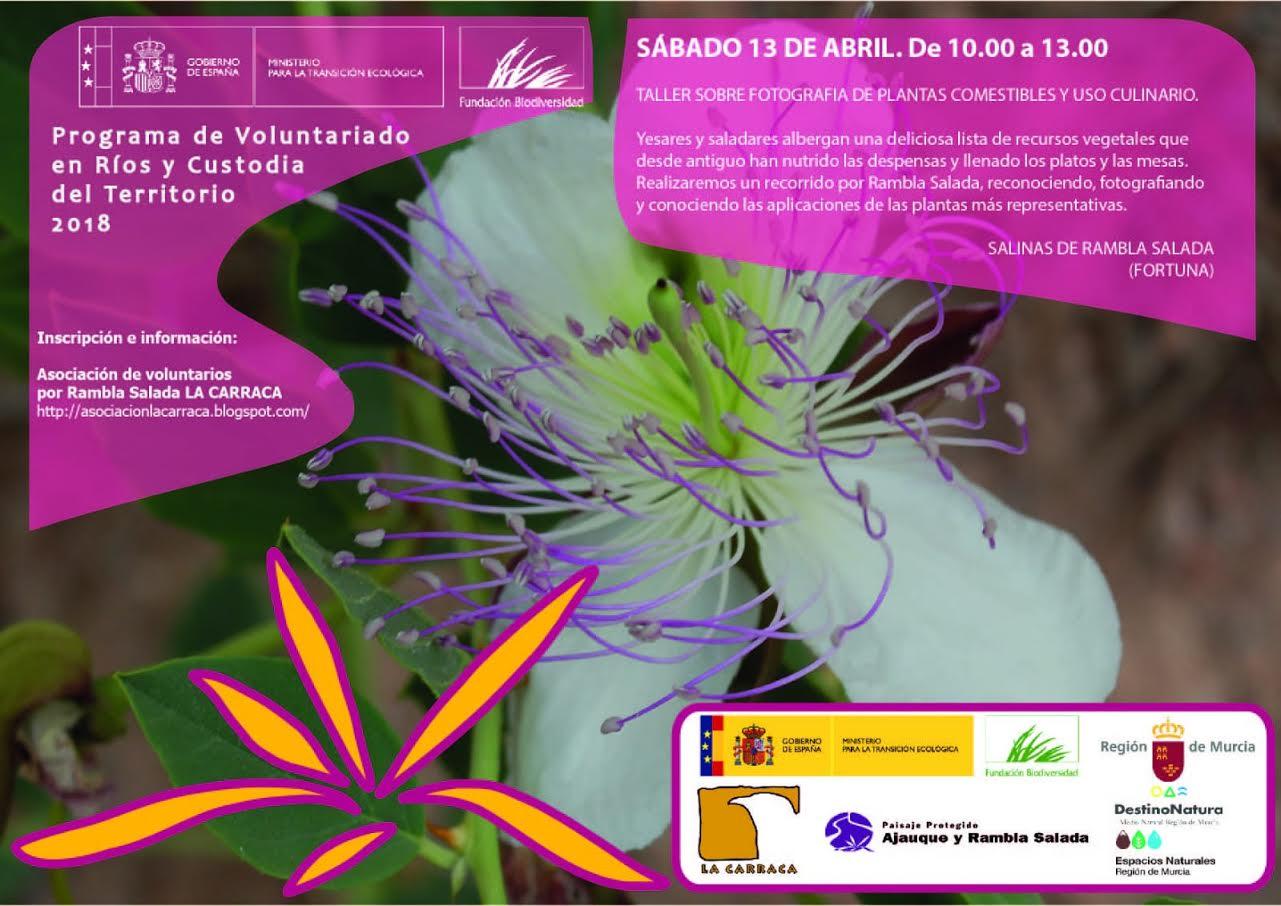 Taller de Fotografía de Plantas Comestibles, con La Carraca