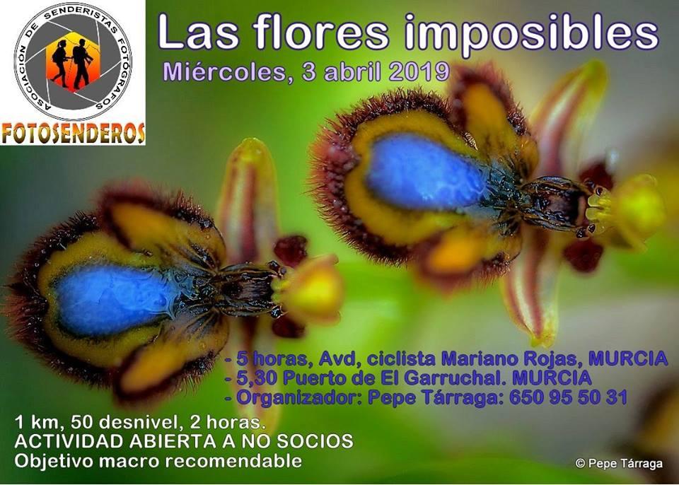 Ruta Fotosenderos: Las Flores Imposibles