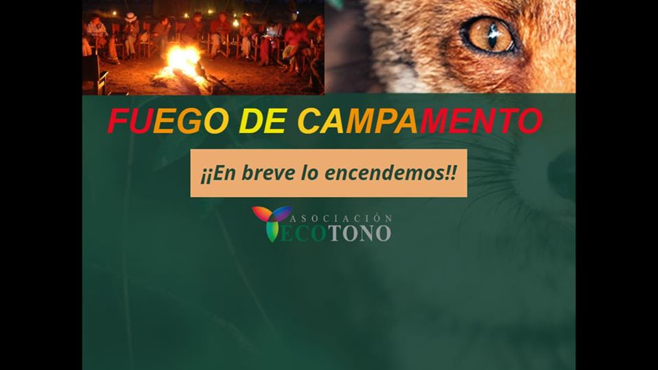 Fuego de Campamento, de Ecotono